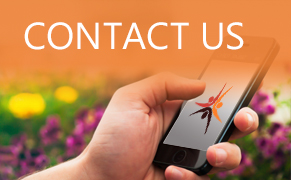 Link image for Contact Us